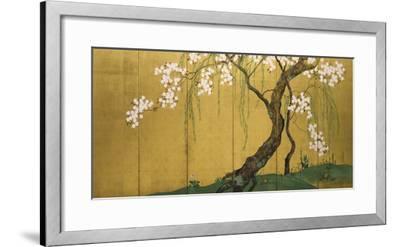 Maples and Cherry Trees-Sakai Hoitsu-Framed Giclee Print