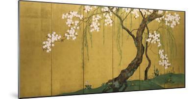 Maples and Cherry Trees-Sakai Hoitsu-Mounted Giclee Print