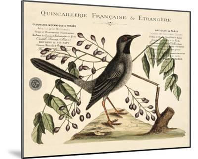 Vintage Bird - Marseilles-Stephanie Monahan-Mounted Giclee Print