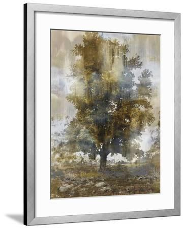 Tree Dreamscape I-Paul Duncan-Framed Giclee Print