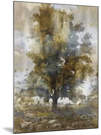 Tree Dreamscape I-Paul Duncan-Mounted Giclee Print