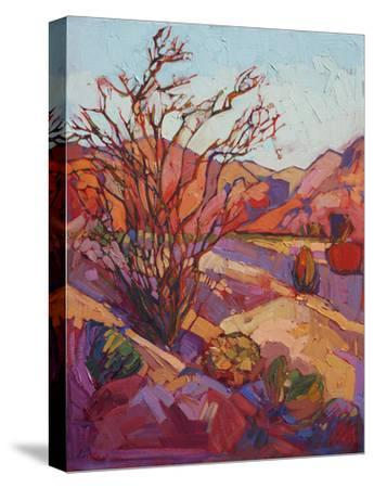 Ocotillo Shadow-Erin Hanson-Stretched Canvas Print