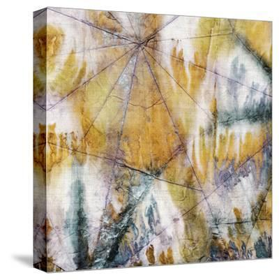 Mystic 4-John Butler-Stretched Canvas Print