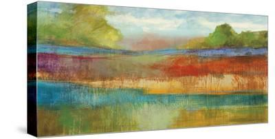Spring Expanse 1-Ursula Brenner-Stretched Canvas Print