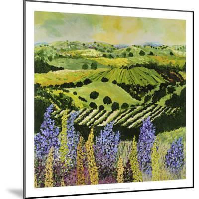 Wildflower Ridge-Allan Friedlander-Mounted Premium Giclee Print