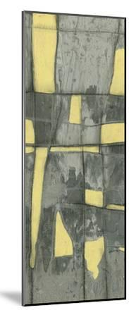 Lemon on Grey II-Jennifer Goldberger-Mounted Premium Giclee Print