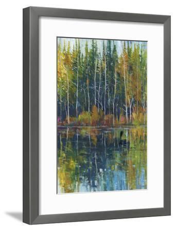 Pine Reflection I-Tim OToole-Framed Premium Giclee Print