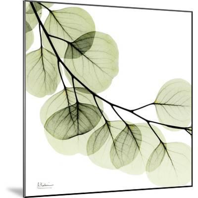 Mint Eucalyptus 2-Albert Koetsier-Mounted Art Print