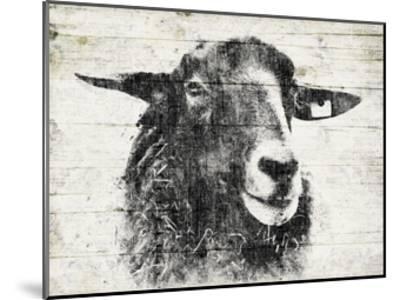 Vintage Sheep-Jace Grey-Mounted Art Print