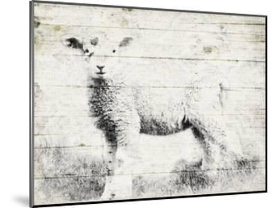 Vintage Lamb-Jace Grey-Mounted Art Print