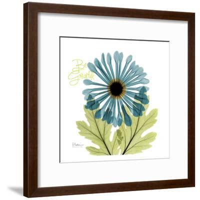 Greatful Chrysanthemum H68-Albert Koetsier-Framed Art Print