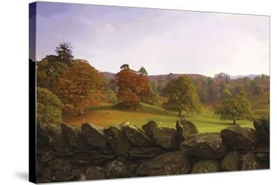 Dry Stone Wall-Chris Simpson-Stretched Canvas Print