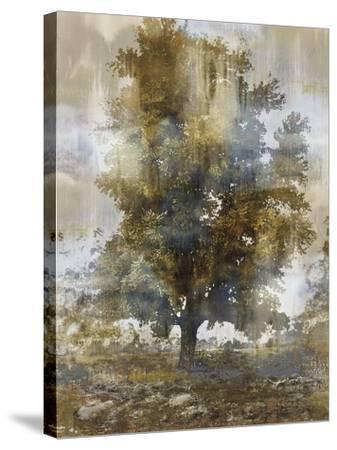 Tree Dreamscape I-Paul Duncan-Stretched Canvas Print