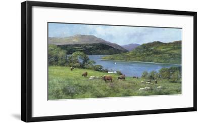 Highland Cattle-Clive Madgwick-Framed Giclee Print