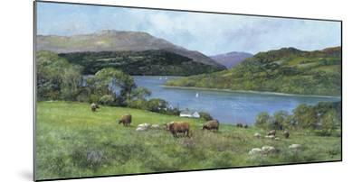 Highland Cattle-Clive Madgwick-Mounted Giclee Print