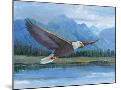 Eagle Soaring-Tim O'toole-Mounted Art Print
