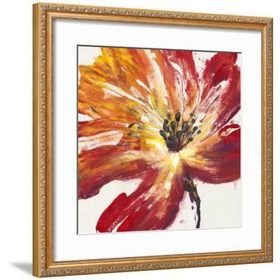 Fleur Rouge II-Tim O'toole-Framed Art Print