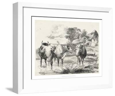 Rural Charms I-Unknown-Framed Giclee Print