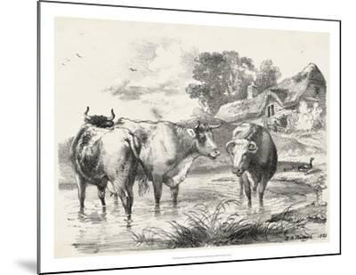 Rural Charms I-Unknown-Mounted Giclee Print