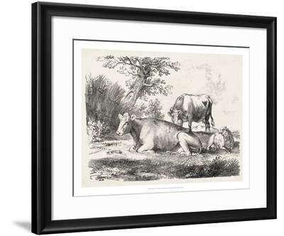 Rural Charms IV-Unknown-Framed Giclee Print