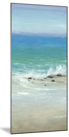 Salt Spray I-Tim O'toole-Mounted Giclee Print