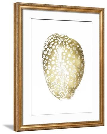 Gold Foil Shell II-Vision Studio-Framed Art Print