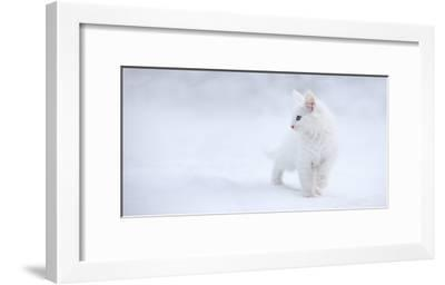 White as Snow-Esm?e Prexus-Framed Art Print