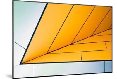 yellow dart-Linda Wride-Mounted Art Print