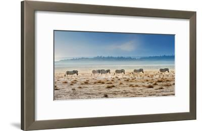 Promenade-Piet Flour-Framed Art Print
