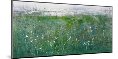 Colorscape 06416-Carole Malcolm-Mounted Art Print