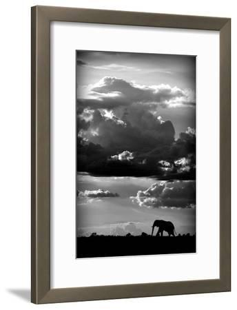 He walks under an African Sky-WildPhotoArt-Framed Art Print