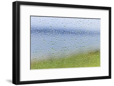 Raindrops on Glass 2-Don Paulson-Framed Giclee Print