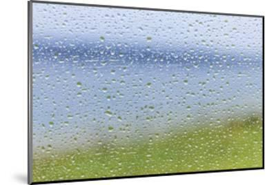 Raindrops on Glass 2-Don Paulson-Mounted Giclee Print