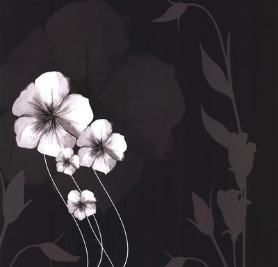 Ebony and Ivory III-Kate Knight-Framed Art Print