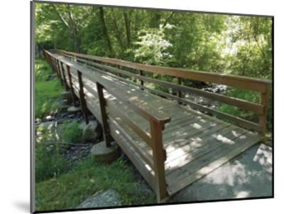 Eddy's Bridge-Unknown Unknown-Mounted Art Print