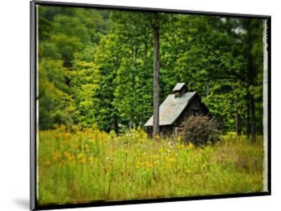 Country Barn 1-Suzanne Foschino-Mounted Art Print