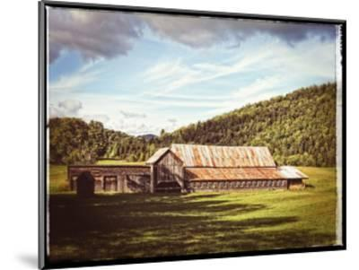 Country Barn 3 Vintage-Suzanne Foschino-Mounted Art Print