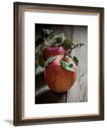 Apple Duo-Melody Hogan-Framed Art Print