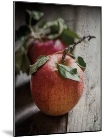 Apple Duo-Melody Hogan-Mounted Art Print