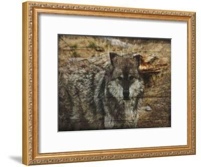 Alfa Wolf-Sheldon Lewis-Framed Art Print