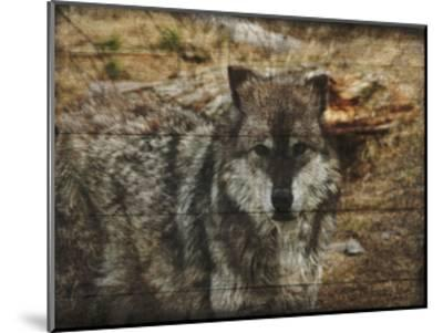 Alfa Wolf-Sheldon Lewis-Mounted Art Print