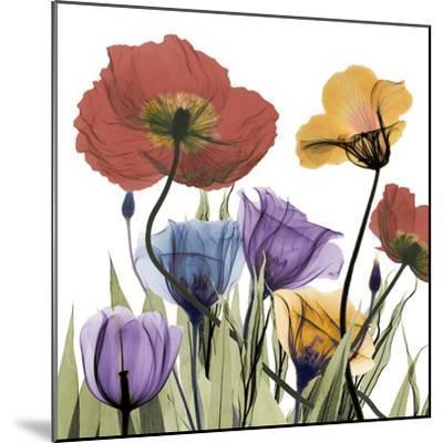 Flowerscape-Albert Koetsier-Mounted Art Print