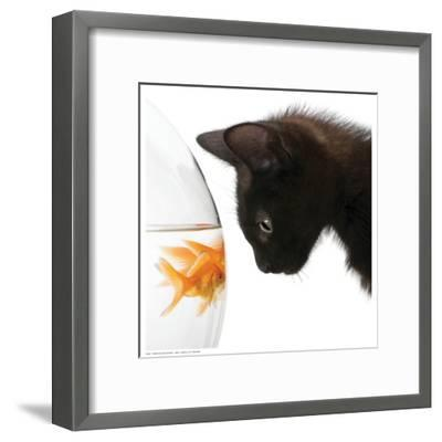 Penny for Your Thoughts--Framed Art Print