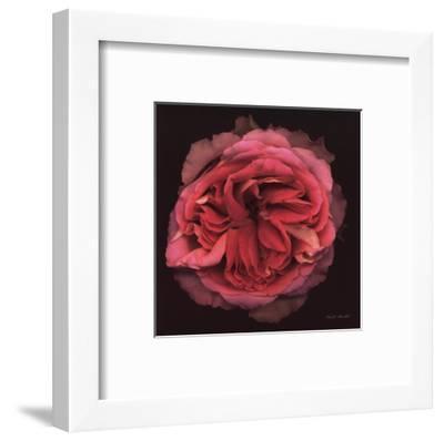 Profusion-Harold Feinstein-Framed Art Print