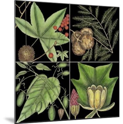 Graphic Botanical Grid III-Mark Catesby-Mounted Giclee Print