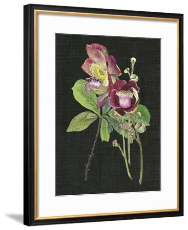 Couroupita Guianensis II-Melissa Wang-Framed Giclee Print
