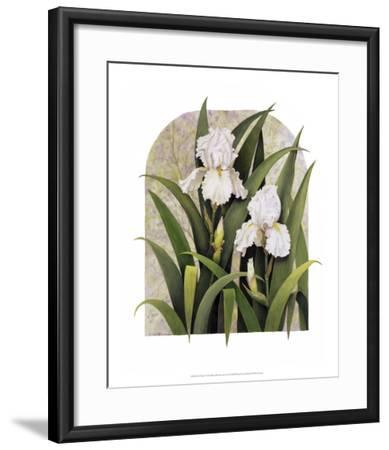 Iris Vignette-Marcia Matcham-Framed Art Print