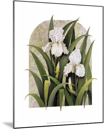 Iris Vignette-Marcia Matcham-Mounted Art Print