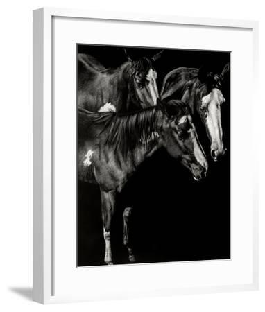 Scratchboard Blaze Buddies-Julie Chapman-Framed Giclee Print