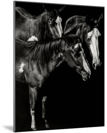 Scratchboard Blaze Buddies-Julie Chapman-Mounted Giclee Print